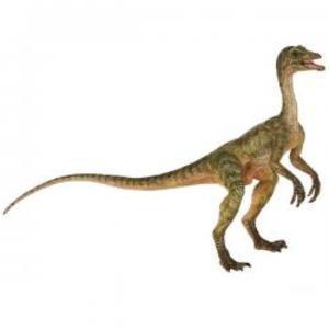 恐竜フィギュア PAPO パポ DINOSAURS ダイナソー コンプスグナトゥス 55072